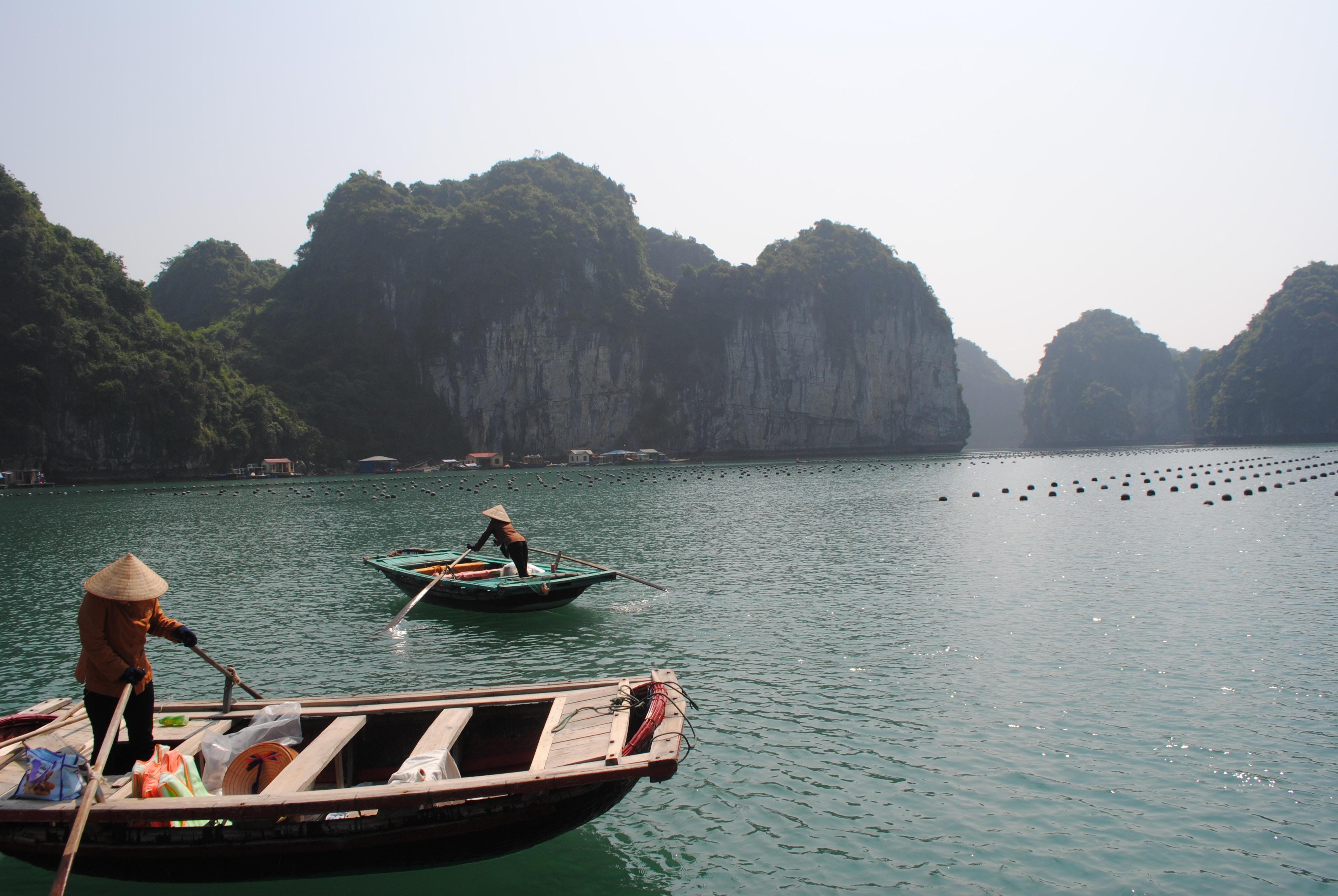 Vietnam Tourism or Internship in Vietnam