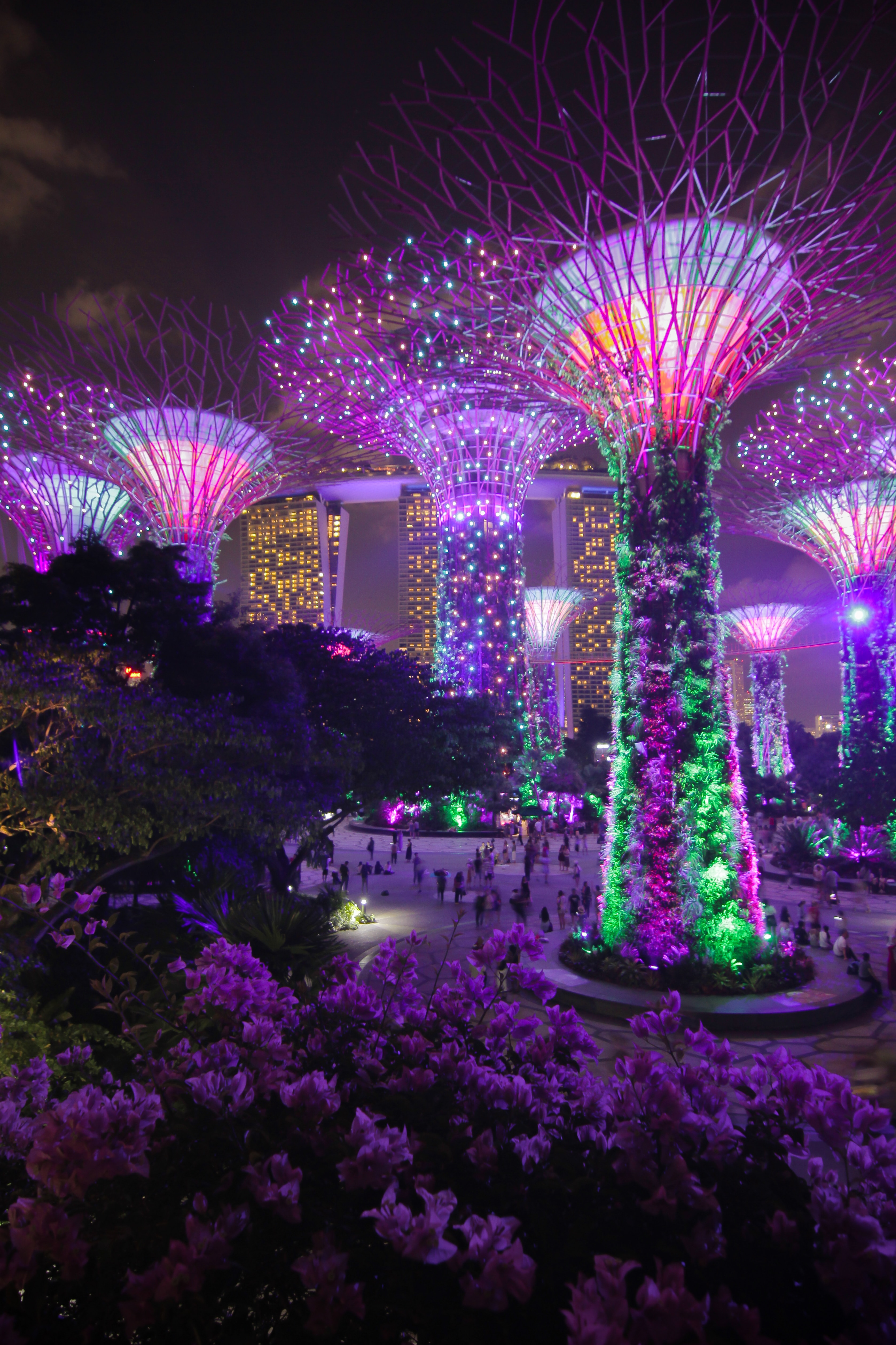 Singapore Ethnic