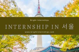internship in seoul