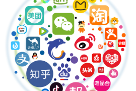 Chinese Smart Phone Application